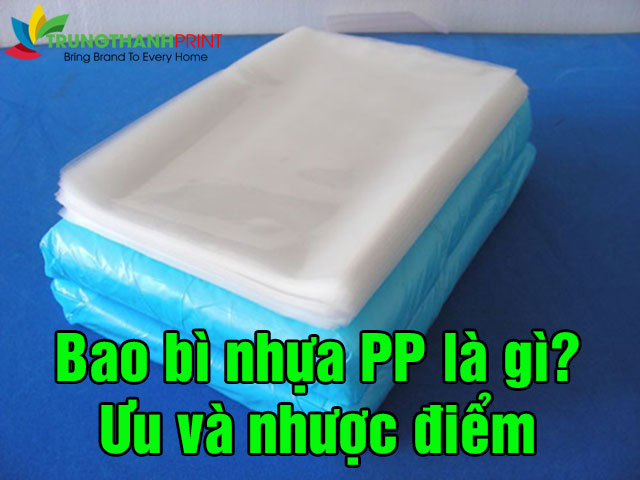 bao-bi-nhua-pp-la-gi