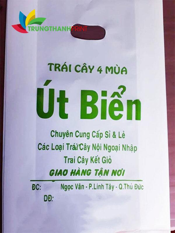 in-bao-bi-tui-nilon-vung-tau