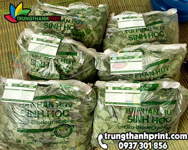 tui-nilon-dung-rau-sach-2